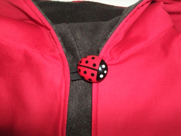Cute ladybird button!